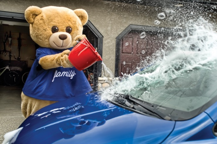 Teddy Car wash