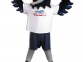 Confederation-College---Thunderhawk