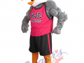 Ecole-H.J.-Cody---Tough-Gull