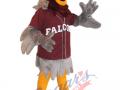 Frontenac-SS.---Falcon