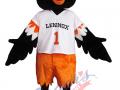 K-12-Data-Center---Lennox-the-Oriole