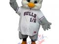 Newport-Gulls---Gully-Jr.
