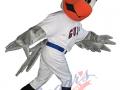 Newport-Gulls--Gully