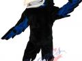 Olathe-College-HS---Raven