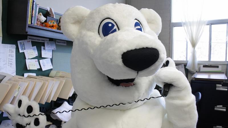 Support for custom mascot costumes