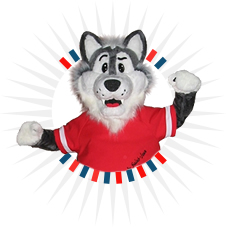 Husky Mascot  sc 1 th 225 : school mascot costumes  - Germanpascual.Com